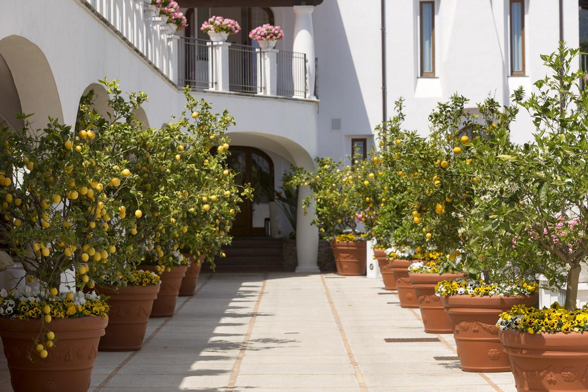 Villa Piedimonte Ravello